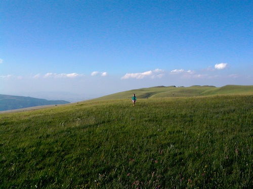 a sea of emerald green on the Sibillini Mountains