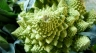 broccoli romanesco, the beautiful cousin of cauliflower