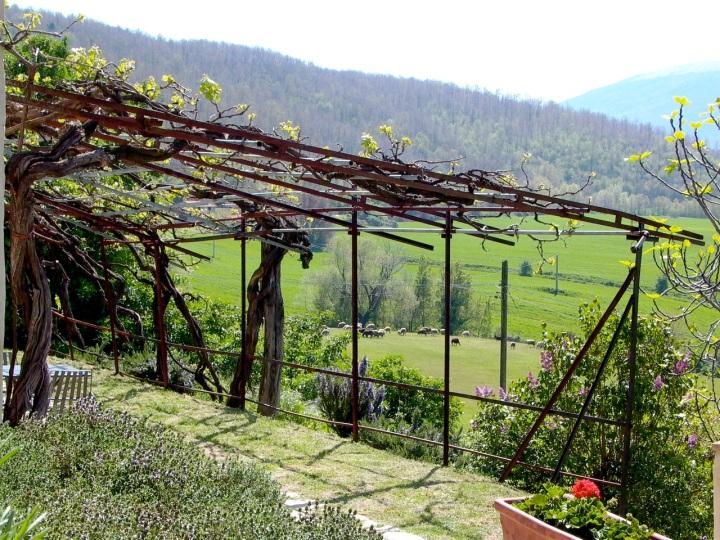 garden of Italian villa in Umbria at Alla Madonna del Piatto Agriturismo