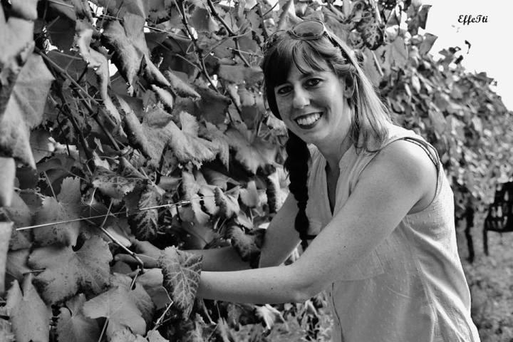 Grape harvest in Umbria