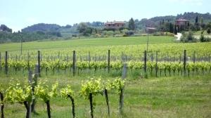 spring in Umbria Italy