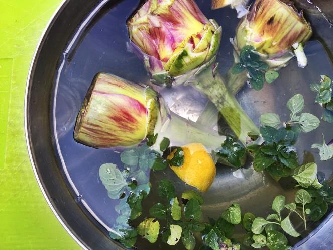 how to clean an artichoke keep in acidulated water